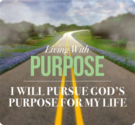 the church of pursuing god s goals for his church in a divided religious world books i will pursue god s purpose for my guest cross church