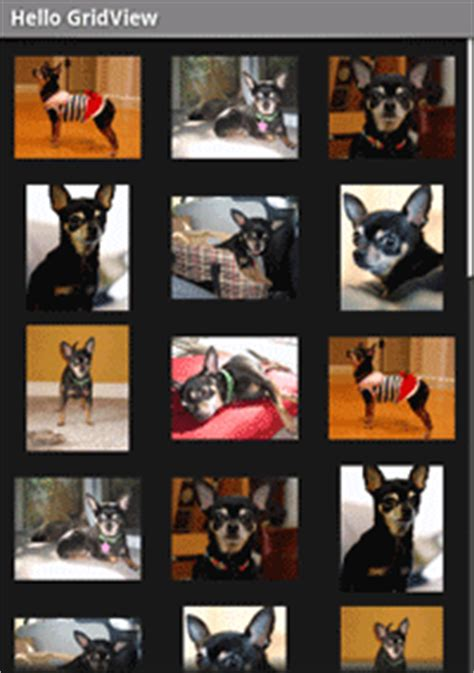 gridview layout animation gridview xamarin