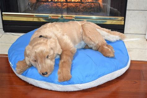 large stuffed golden retriever golden retriever large stuffed animal plush 34 inch pillow ditz designs ebay