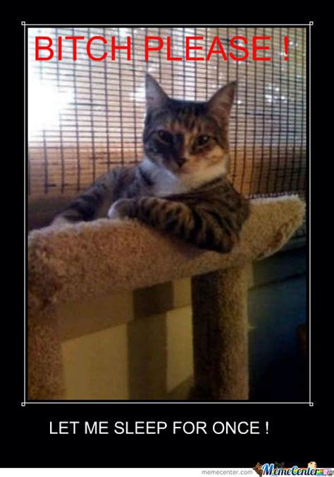 Sleepy Cat Meme - sleepy cat by stifmeister11 meme center