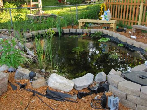 backyard turtle habitat red ear slider outdoor habitat gardening pinterest