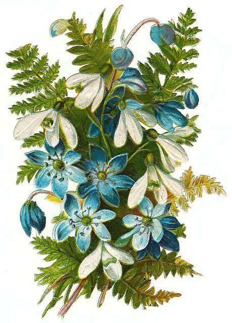 3d Blumen 4990 by Glanzbilder Victorien Die Cut Scrap