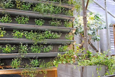 think green 20 vertical garden ideas