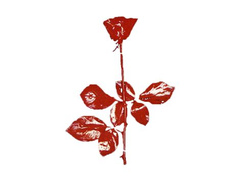 violator rose picture to pin on pinterest pinsdaddy