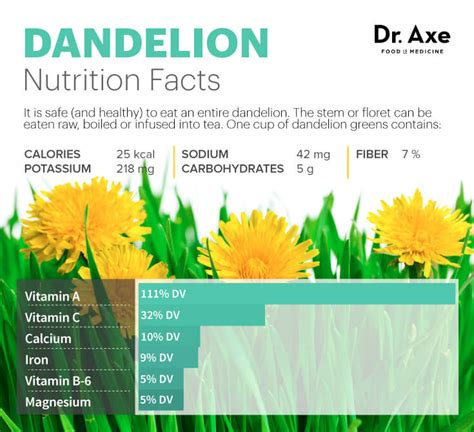 Dr Axe Detox Tea by Dandelion Tea For Liver Detox Healthy Skin Stomach Dr