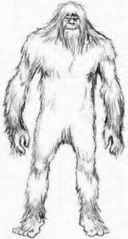 big foot colouring pages printable bigfoot coloring pages cartoon coloring style free