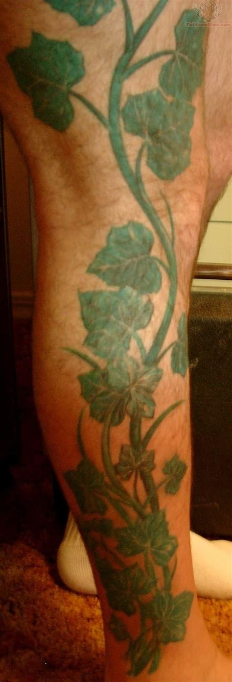 ivy tattoo on ribs 1000 images about vine tattoos on pinterest colorful