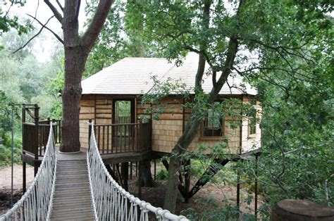 real treehouse 100 real treehouse morrison treehouse hotel and