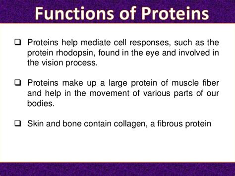 7 protein functions protein its functions