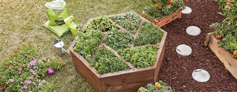 Building A Planter Bed by How To Build A Hexagon Planter