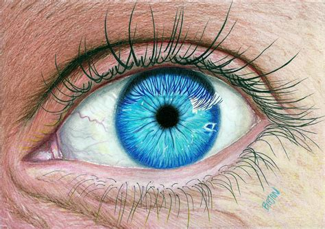 drawing color blue and green eye drawing www pixshark images