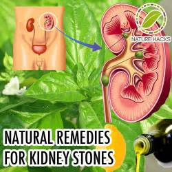 home remedies for kidney stones n glam april 2015
