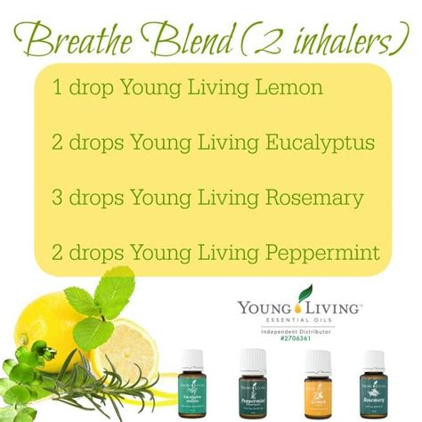 Drericz Emotional Detox Inhaler by 25 Best Ideas About Living Allergies On