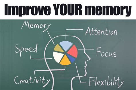 memory the powerful guide to improve memory memory tips memory techniques unlimited memory memory improvement for success books 7 reliable ways to improve your memory