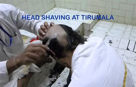 tirupati head shave 2015 tirupati head shave 2015 e auction of human hair held at