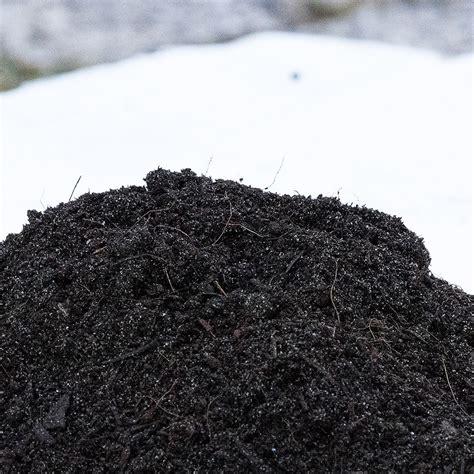 tappeto erboso prezzo terriccio per tappeto erboso prezzo scontato in offerta