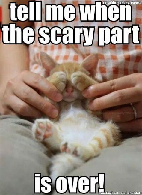 Funny Scary Memes - scary part funny pictures quotes memes jokes