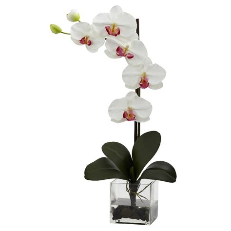 Orchid Vase Arrangement by Phalaenopsis White Orchid Silk Flower Arrangement With Vase Artificial Flowers Silk