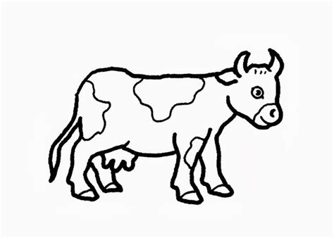 simple cow coloring page baby cow coloring page clipart best clipart best