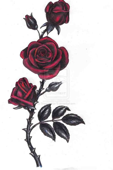 dark roses tattoos 42 best roses and roses images on black