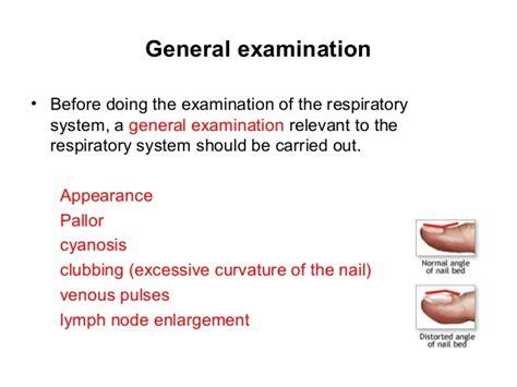 examination   respiratory system