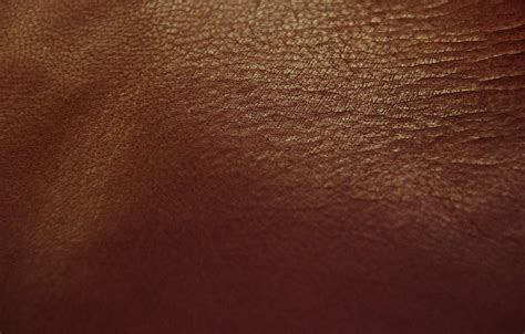 Leder Braun by Kostenloses Foto Leder Braun Rot Braun Rot