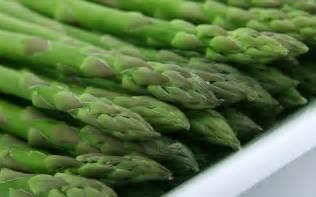 Zone Gardening Calendar - asparagus planting growing and harvesting asparagus the old farmer s almanac