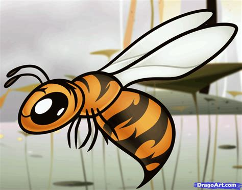 how to a for how to draw a wasp for step by step animals for for free