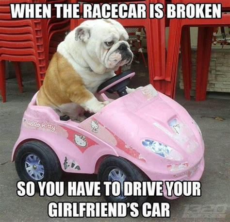 Broken Car Meme - top 23 car memes life quotes humor