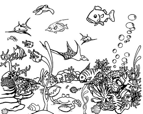 ocean coloring pages pdf coloring pages photo ocean coloring sheets images ocean
