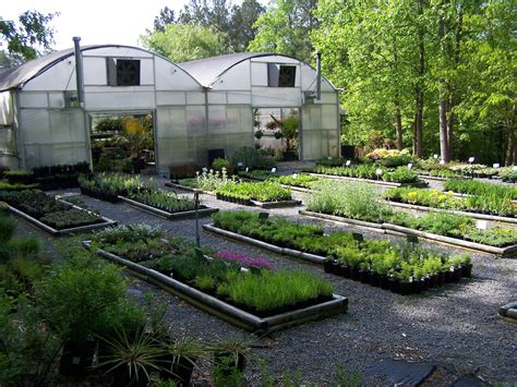 Garden Nursery by Jasper Ga Plant Nursery Woodland Gardens Canton