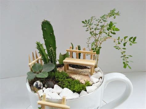 Hunting Home Decor How To Make A Fairy Garden With Teacups Craft Projects