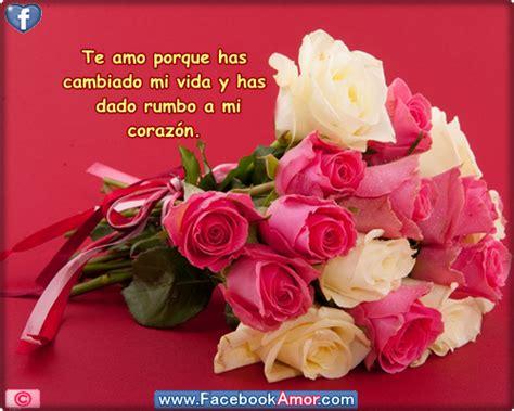 imagenes de flores bonitas para facebook im 225 genes bonitas de flores con frases para compartir en