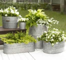 galvanized metal planter galvanized metal tubs buckets pails as planters
