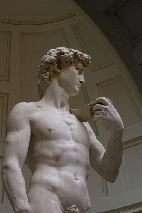michelangelo david incredible close up shots of michaelangelo s david will