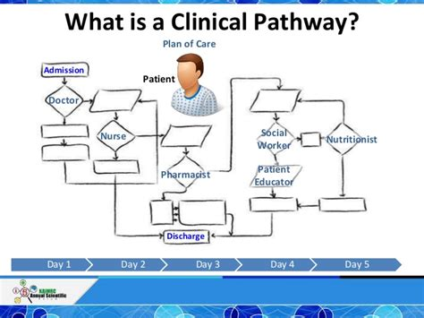 care pathway template homee clinical pathway exles pictures inspirational