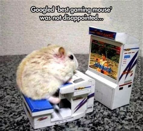 games memes  collection  funny games pictures
