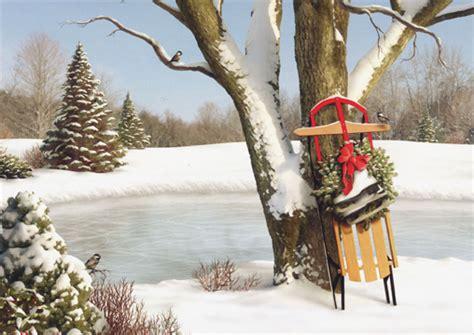 sled leaning against tree 1 card 1 envelope alan giana