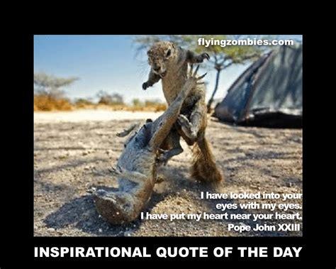 Animal Quotes Animal Friends Quotes Quotesgram