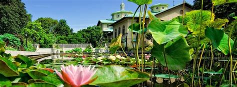 How To Go Botanic Garden The Botanic Garden How To Get There What To Do Where To Go After
