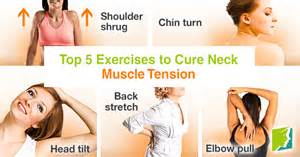 Neck and shoulder muscles workout top 5 exercises to cure neck muscle