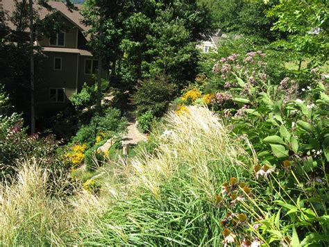 Steilen Hang Bepflanzen by Planting A Steep Bank 28 Images Gardening On Slopes
