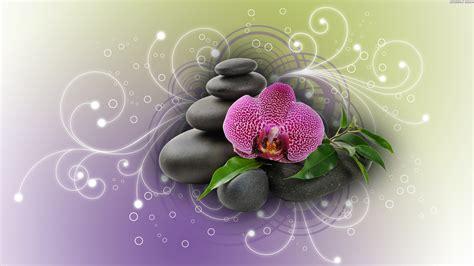 Home Design Mac Os X 1920x1080 purple orchid amp black stones desktop pc and mac