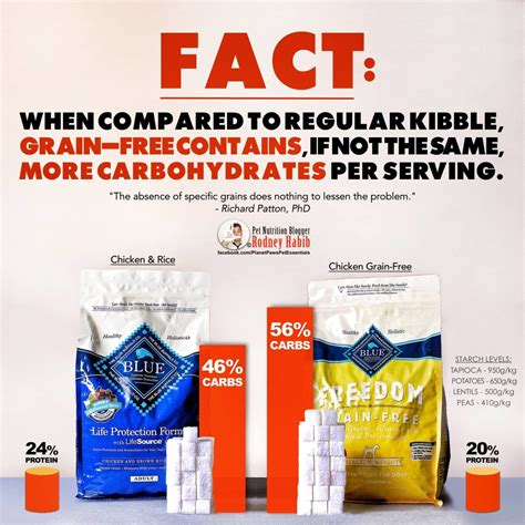 is grain free food better why grain free cat food products aren t all they re cracked up to be catcentric