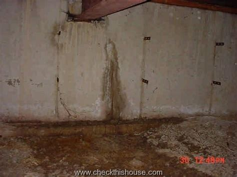 crawlspace inspection fundation cracks and leaks