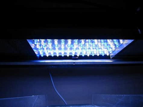 China 15w Led Aquarium Lights Blue White China Led Blue Led Lights Aquarium