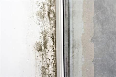 Schimmel An Holzfenster Entfernen 4547 by Schimmel Kann Nicht Nur Unansehnlich Sein Sondern Auch