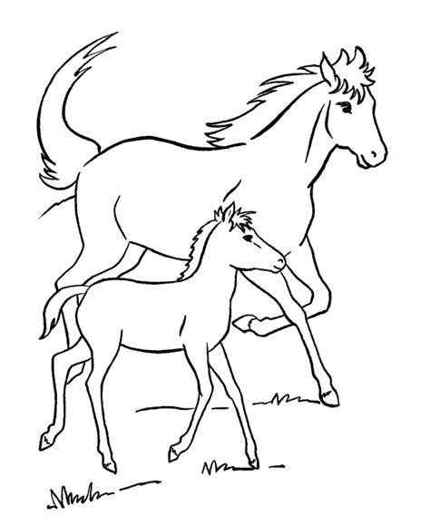 coloring pages of horses and foals free printable coloring pages for