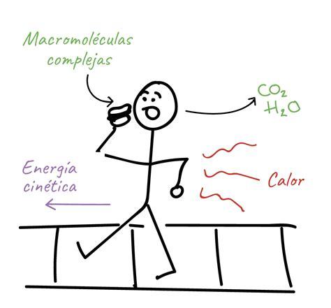 preguntas cientificas sobre el medio ambiente energia cinetica ejemplos www imgkid the image kid