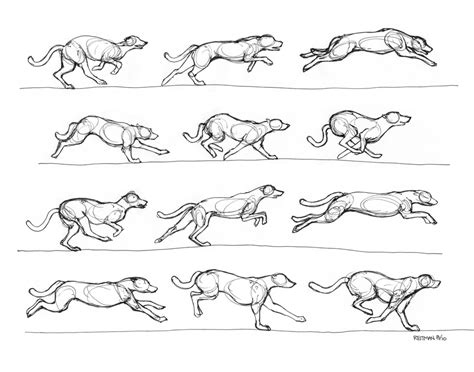 doggy gestures in urban sketching the complete guide greyhound running by renegadestudios on